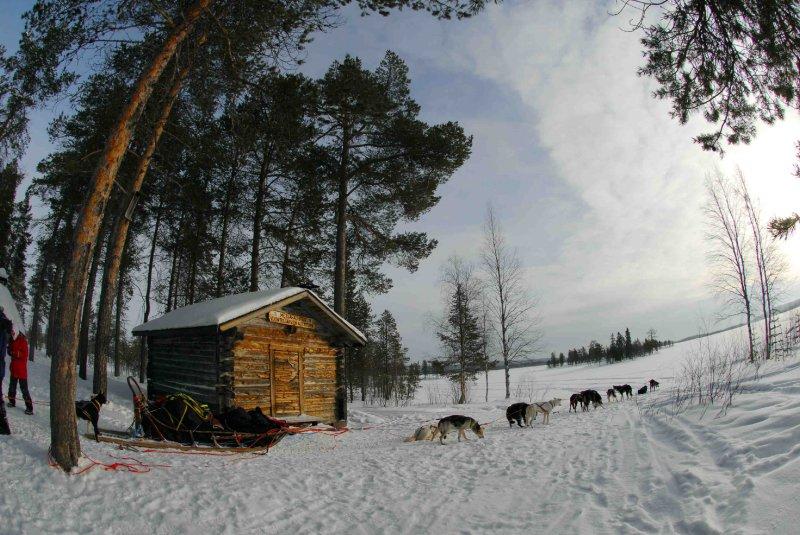 Wilderness hut